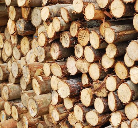 Vente de bois de chauffage près de Maubeuge et Valenciennes